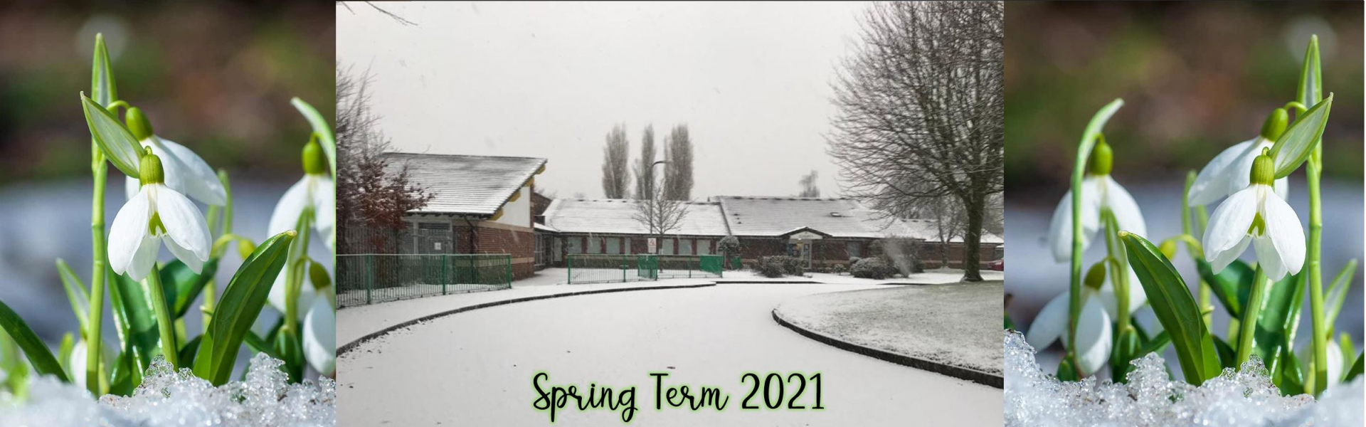 Spring Term 2021 Winter image